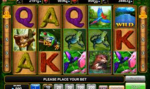 Jocul de cazino online Amazing Amazonia gratuit