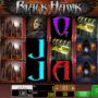 Jocul de cazino online Black Hawk gratuit