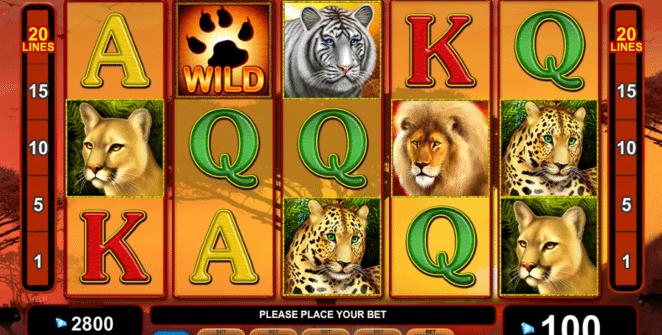 Joaca gratis pacanele Cats Royal online