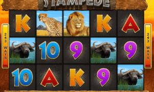 Jocul de cazino online Stampede gratuit