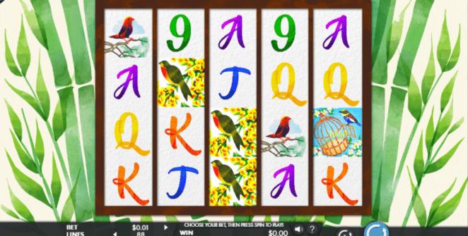 Jocul de cazino onlineBirds and Bloomsgratuit