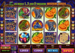 Jocuri Pacanele Lucky Witch Online Gratis