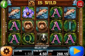 Joaca gratis pacanele Silver Creek Giant online