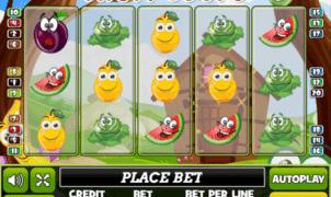 Jocuri Pacanele Fruit Loops Online Gratis