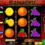 Joaca gratis pacanele Black Horse online