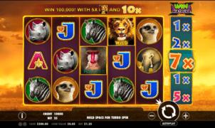 Hot Safari gratis joc ca la aparate online