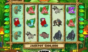 Joaca gratis pacanele Ooga Booga Jungle online