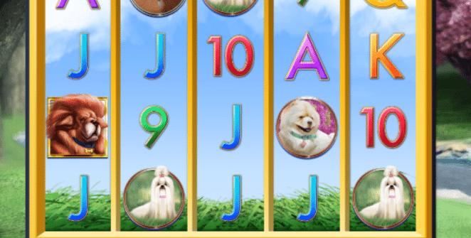 Joaca gratis pacanele A Bark in the Park online